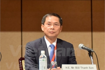 EVFTA, EVIPA have both strategic, economic importance: diplomat