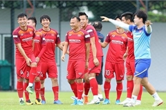 Vietnam maintain top spot in Southeast Asia's football: FIFA