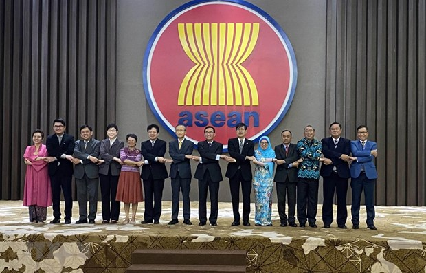 Jakarta meeting reviews ASEAN+3 cooperation hinh anh 1