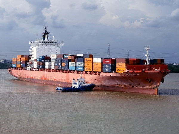 COVID-19: vessels via seaports down, cargo up 10 percent hinh anh 1
