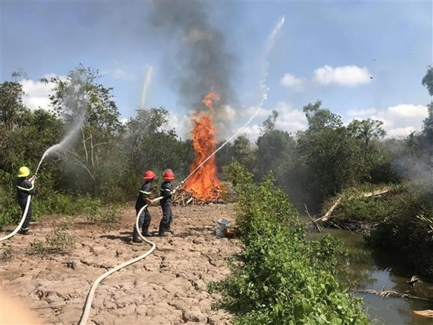 Hau Giang raises fire danger level to the highest hinh anh 1