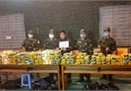 Transnational drug ring busted, 650kg of drugs seized