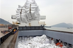 PM: rice exports must be controlled to ensure food security