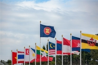 Vietnam joins hands with ASEAN battle against COVID-19