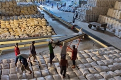 Finance Ministry proposes suspending low-grade rice exports until June 15