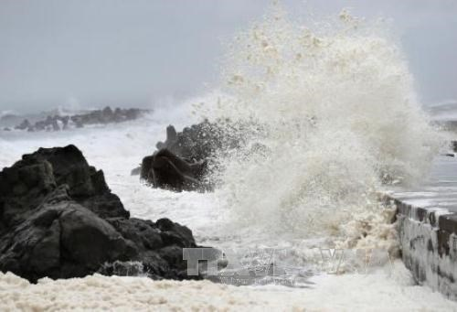 Up to 13 tropical storms, depressions to enter East Sea this year
