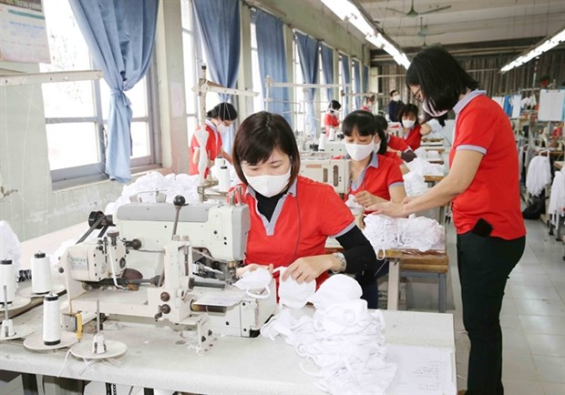Vietnam could become world's face mask factory amid COVID-19 hinh anh 1