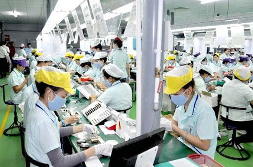 Vietnamese labourers with expired contracts in RoK entitled for 50-day extension hinh anh 1