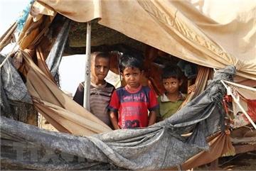 Vietnam urges concerned parties in Yemen to implement ceasefire