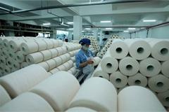 COVID-19 presents opportunities to attract more FDI