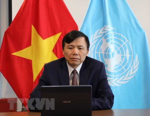 Vietnam backs two-state solution to Israeli-Palestinian conflict hinh anh 1