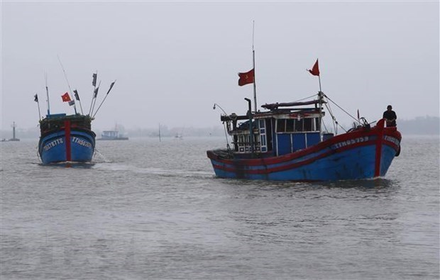 Experts: China's acts in East Sea increase regional tensions hinh anh 1