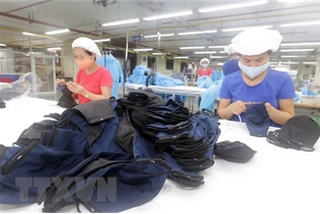 Vietnam exports nearly 416 million face masks
