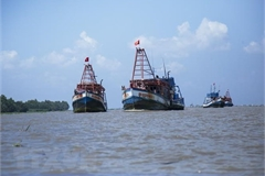 Fisheries Society opposes Chinese fishing bans in East Sea