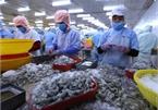 Ministry extends period selecting Vietnam's prestigious exporters 2019
