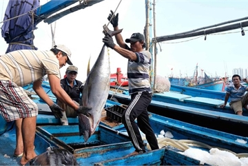 Ministry: China's suspension of fishing in Vietnam's waters meaningless