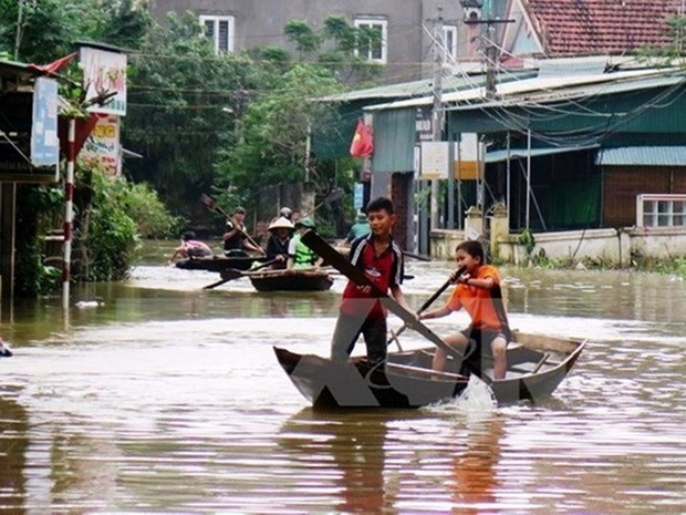 Natural disasters cause economic losses of over 1.38 billion USD this year hinh anh 1