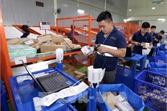Vietnam strives to have over half of population shopping online by 2025