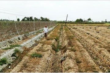 Mekong Delta province faces severe water shortage