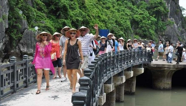 Vietnam yet to open door to all foreign tourists hinh anh 1