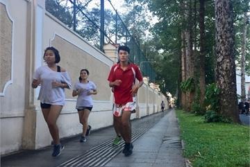 HCM City to build more public parks