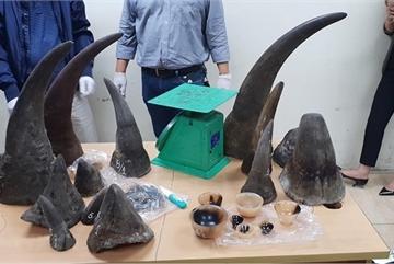 Man imprisoned for trafficking rhino horns
