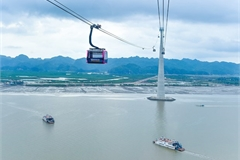Cable line with world's highest track rope to be inaugurated in Hai Phong