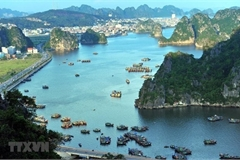 Quang Ninh leads in PAR index for third consecutive year