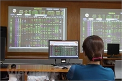 New traders flock to local stock market