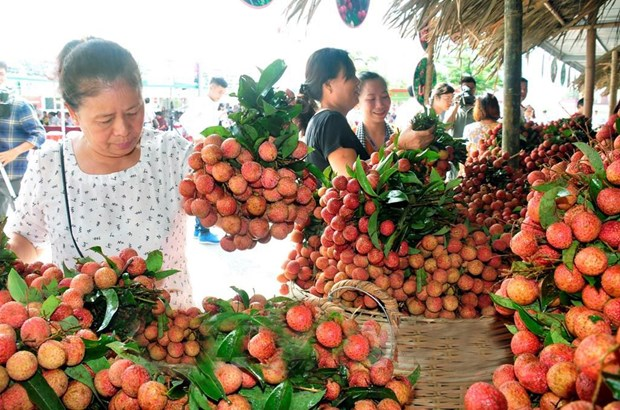 Veggie, fruit exports exceed 1.5 billion USD in first half hinh anh 1