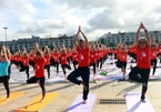 Int'l Yoga Day draws nearly 3,000 in Quang Ninh