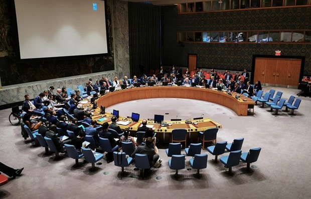 UN Security Council adopts Vietnamese-compiled resolution hinh anh 1