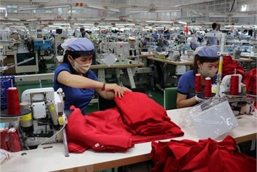 Job losses on the way as firms look to downsize