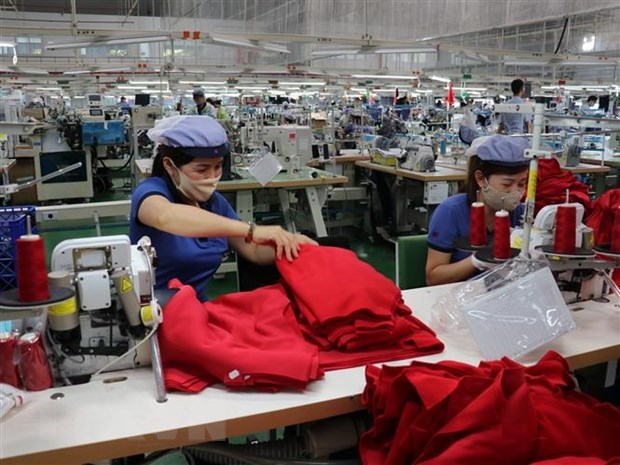 Job losses on the way as firms look to downsize hinh anh 1