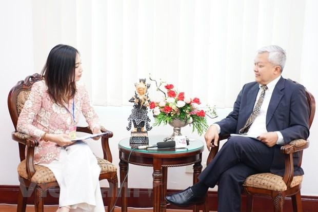 Vietnam maintains ASEAN cooperation process despite pandemic: Indonesian ambassador hinh anh 1