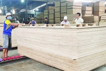 Local firms still not aware of anti-dumping investigations