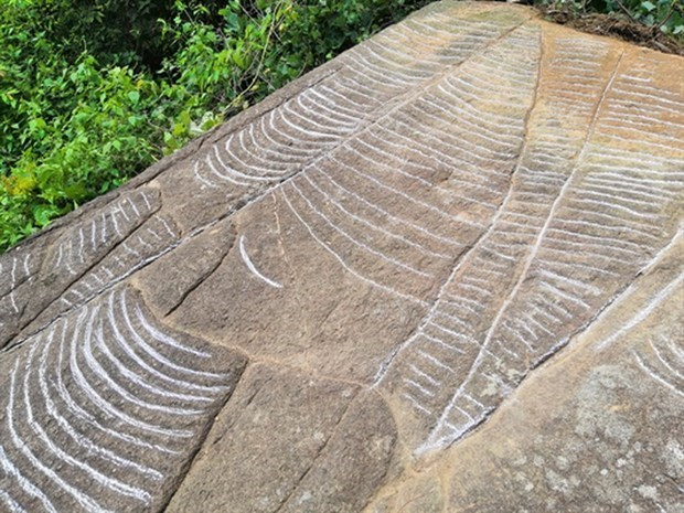 More ancient slabs with engravings of terraced fields found in Yen Bai hinh anh 1