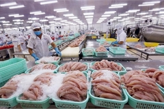 EVFTA brings new impetus for Vietnam's fishery exports
