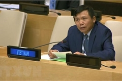 Vietnam pledges to promote rule of law at national, int'l level