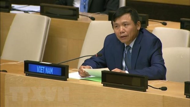Vietnam pledges to promote rule of law at national, int'l level hinh anh 1