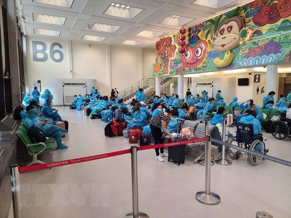 Four weekly flights to be launched between Vietnam, Taiwan (China) hinh anh 1