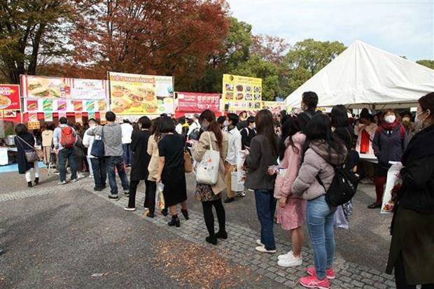 Vietnam Festival in Japan kicks off hinh anh 1