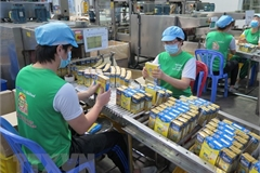 RCEP - A new boost for regional enterprises