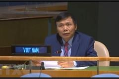 Vietnam supports UNSC reform: Ambassador