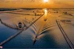 Vietnam promotes preservation of wetland protected areas