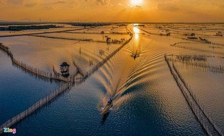 Vietnam promotes preservation of wetland protected areas hinh anh 1