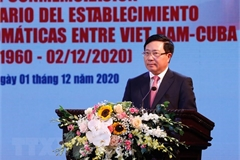 Vietnam treasures solidarity, friendship with Cuba: Deputy PM