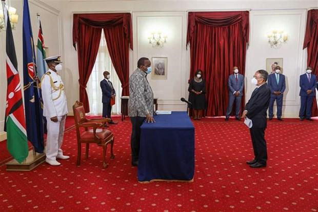 New Vietnamese ambassador seeks to bolster Vietnam-Kenya ties hinh anh 1