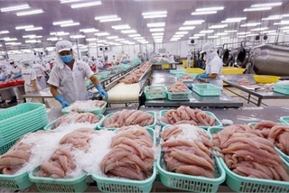 US largest importer of Vietnam's agro-forestry-fishery products