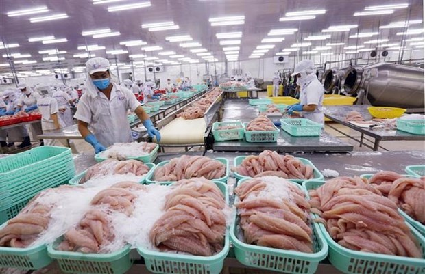 US largest importer of Vietnam's agro-forestry-fishery products hinh anh 1